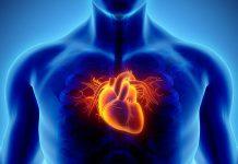 بیماری عروق کرونری قلب چیست؟