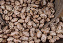 جدول ارزش غذایی لوبیا چیتی